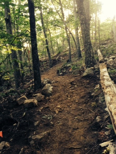 A section recently built on the newest trail at Massanutten!